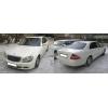 Прокат автомобиля Lexus LX 570 белого/черного цвета для свадьбы