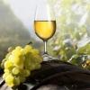 Дом экзотических вин «DARA».  Приглашает всех!